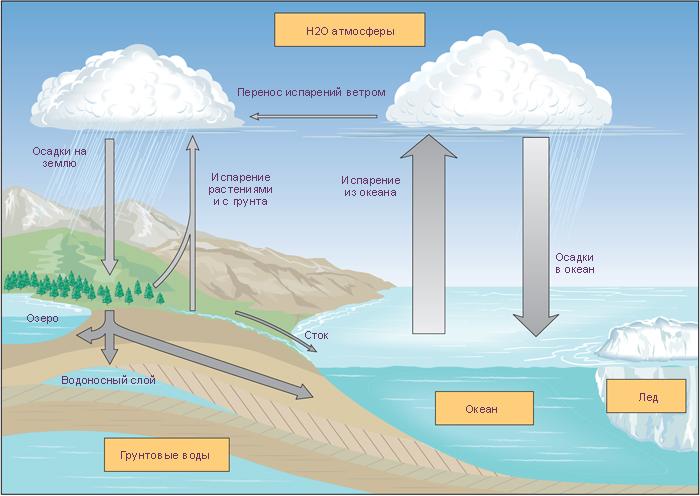 Схема. Цикл воды в природе.